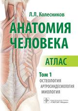 Анатомия человека. Атлас в 3-х томах. Том 1. Остеология, артросиндесмология, миология